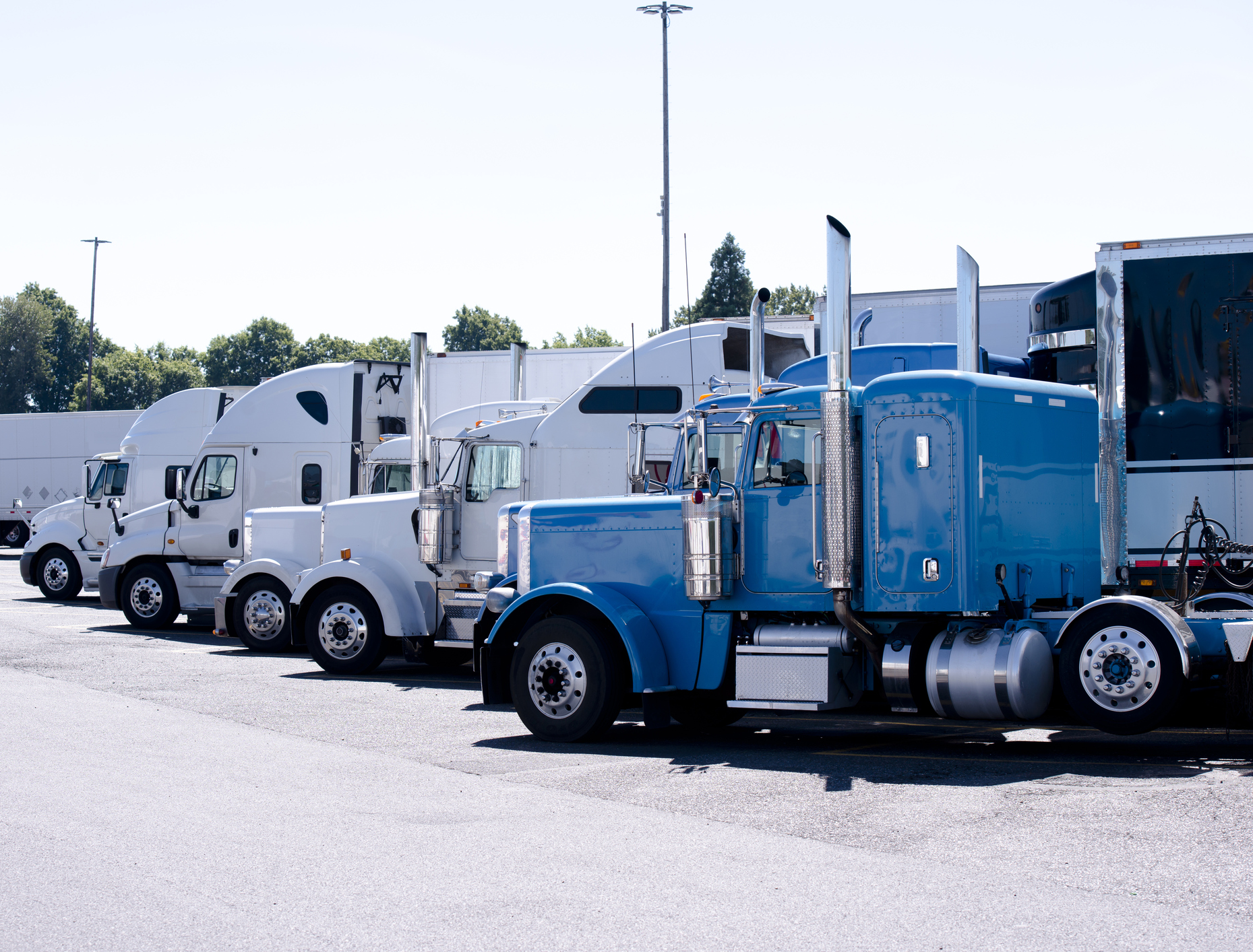 Your First Year as a Trucker Driver: What You Should Expect ...